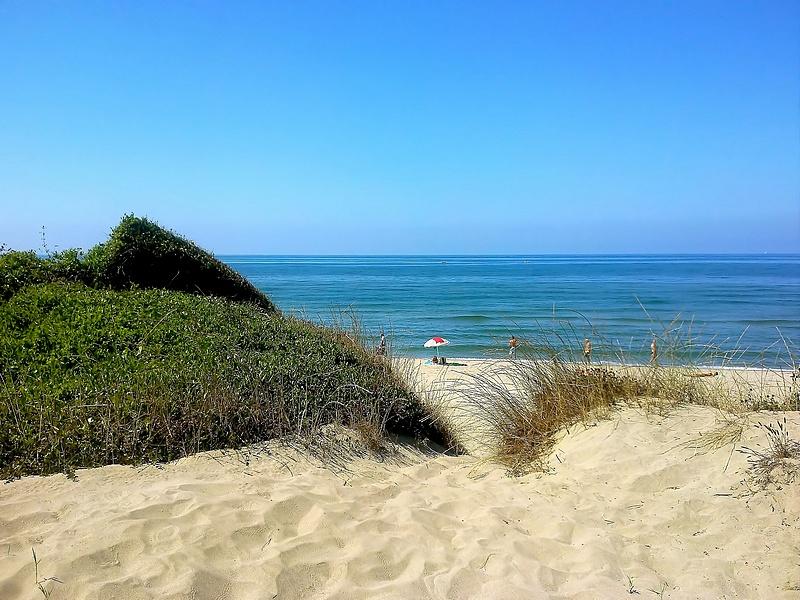 Le spiagge libere di Ostia